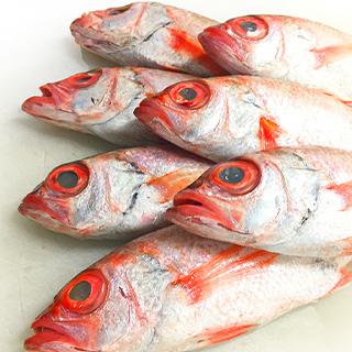 市場より直送の鮮魚