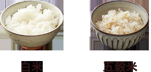 洋食あじと 白米or五穀米